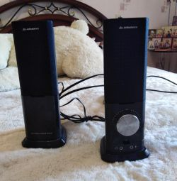 Speakers for the computer