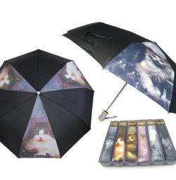 Ομπρέλα θηλυκό αυτόματο Cats Pasio νέο