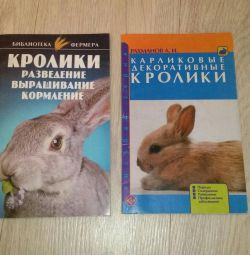 Rabbit decorative book