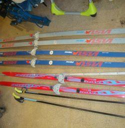 cross-country σκι ξύλο / πλαστικό - tempo sable