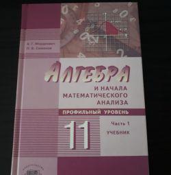 Textbook algebra grade 11