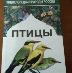 Encyclopedia.