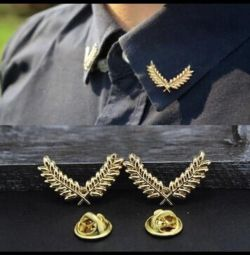 Brooches on the collar