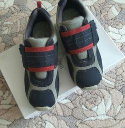 Ανδρικά παπούτσια PEDIPED (ΗΠΑ) 36 σελ.
