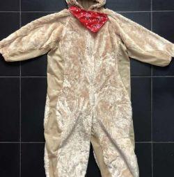Costum de urs