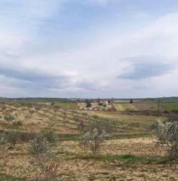 Ένα οικόπεδο (No.2580) με μια επιφάνεια 7.000 s