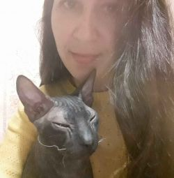 Supraexpunerea pisicilor