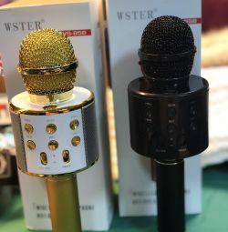 Wireless Karaoke Microphones