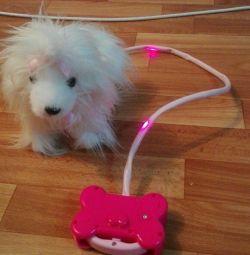 Σκύλος σε λουρί.