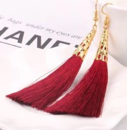 Earrings with brushes