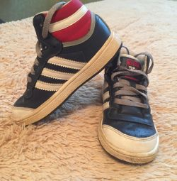 Sneakers Adidas 24p leather