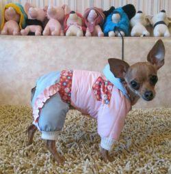 Εξασθενημένες φόρμες για σκύλους