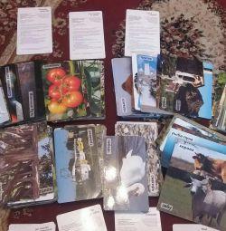 """Cărți """"Clever"""" + discuri DVD."""