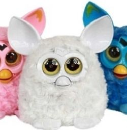 Furby named pixie
