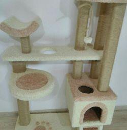 Complex pentru pisici, pisoi cu casa