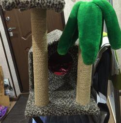 Cat's house, scraper