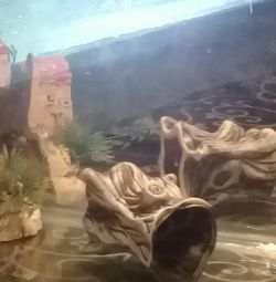 Aquarium mirror 35 l.