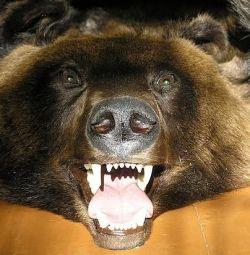 Γεμιστή καφέ αρκούδα με τη μορφή λεπτομερούς δέρματος