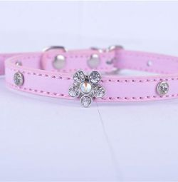 Glam collar for a small dog (2 pcs.)