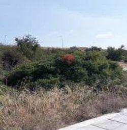 Plot în Pegeia, Paphos
