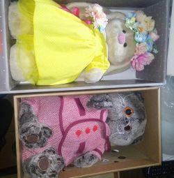 Basiki γάτα λαγουδάκι σε κουτιά