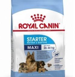 Mâncare pentru câini Royal Canin Maxi Starter