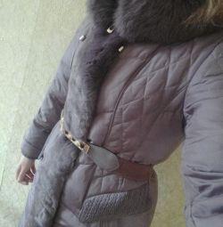 Yeni ceket aşağı Peercat