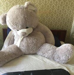 Медведь 2 метра.