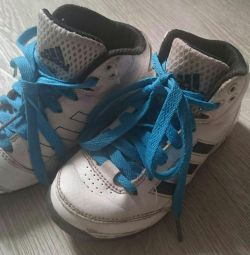 Adidas Cross, 28 μεγέθη