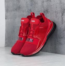 Sneakers Puma Ignite Limitless