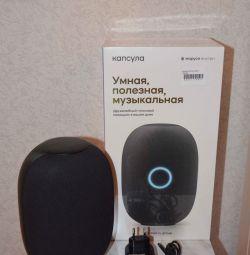 Smart speaker Capsule Marusya