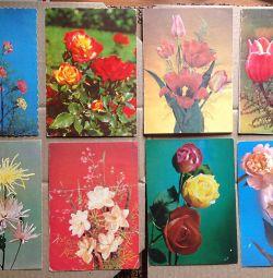 Flori USSR felicitare (1)