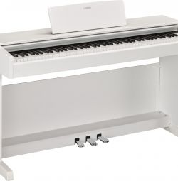 New digital piano Yamaha YDP-143