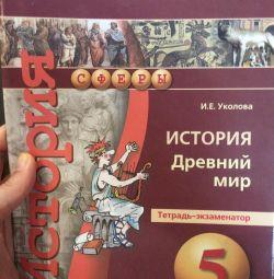 Examinator istoric caiete