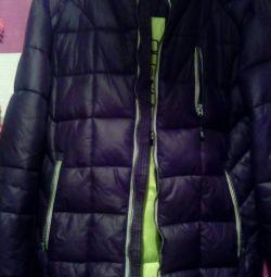 Iarna iarnă