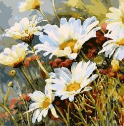 Pictura cu numerele 40x50 cu flori