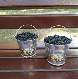 Bucket with caviar