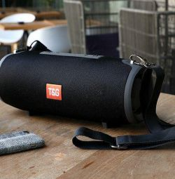Portable speaker T&G Portable (Length 28 cm)