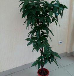 Дерево искусств.Р155-160см.Новое.