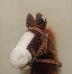 Un cal
