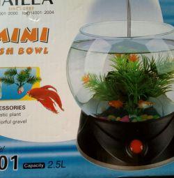Gift Aquarium 2.5 liters.
