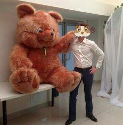 ведмідь м'який
