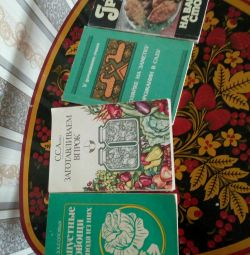 Four books all for 80ub. One 30 rubles.