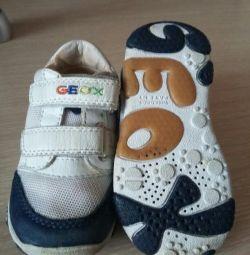 Adidași geox original !!!