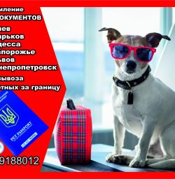 Paperwork for exporting a dog from Ukraine