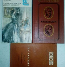 Grade 10 - Books of I.S.Turgenev