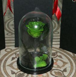Rose in a flask mini