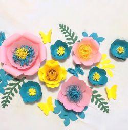Цветы для интерьера и не только