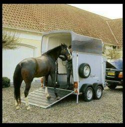 Horse transporter / trailer-house. FRG.b / samp. 2001