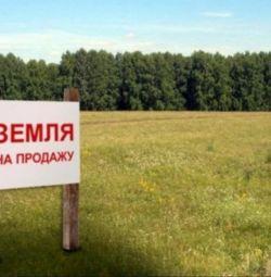 Участок, 30 сот., поселения (ижс)